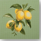 Elizabeth Bradley 'Bothanical Fruits' Tapestry Kits